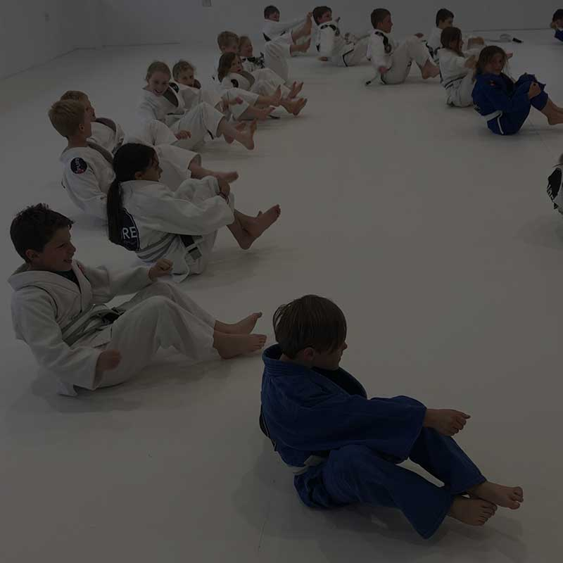 Pure Jiu Jitsu, Junior Classes Martial Arts Southern Highlands